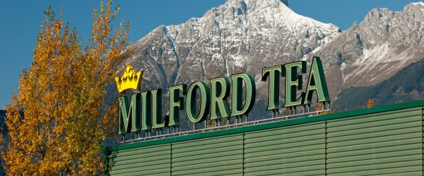 milford_tea_in_hall