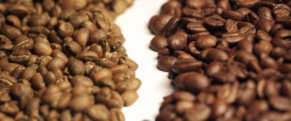 arabica-vs-rhobusta-coffee-beans_2048x2048